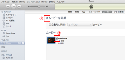 DVD iPhone